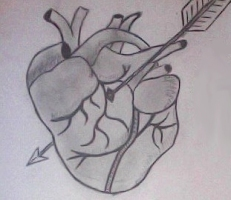 After Cupid ... Pencil on Paper By Kelsey Cleland