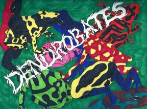 Dendrobates ... Marker on Paper By Kelsey Cleland